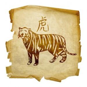 Tygr 2016