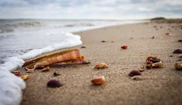 Moře, písek