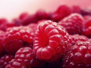 raspberry-427390__340